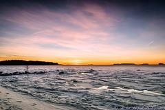 Espoo_Winter_220117_DSC_4628-Edit (rsarpal) Tags: winter morning sunrise dawn colors sky outdoor nikon sigma beach frozen ice sea baltic