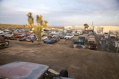 Awesome junkyard in Yucca Valley, CA (vetaturfumare - thanks for 3 MILLION views!!!) Tags: yuccavalley joshuatree junkyard skrotbil 廃車体 wreck rust schrott desert öken california