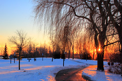 A lovely winter evening [Explored] (Daniel Q Huang) Tags: snow winter