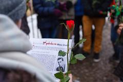 Schüler*innen der IGS Willy Brandt reinigen Stolpersteine in Magdeburg