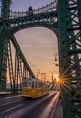 Sunset (Vagelis Pikoulas) Tags: sunset liberty bridge budapest buda pest hungary europe travel tram sun sunburst canon 6d tokina 1628mm view landscape city cityscape