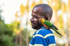 Que cor tem meu Brasil? (Joelma Cedraz) Tags: inexplore explored color brasil sun amazônia floresta pássaro