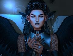 Raven (Carmy Mirabeau aka Carmilla Mirabeau) Tags: genesislab eva ikon emotions swallow weloveroleplay lfleforme l'homme reckless lyba thegachagarden thecoven katat0nik lassitudeennui maitreya