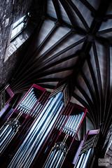 Edinburgh (Christophe Losberger (sitatof)) Tags: christophelosberger edinburgh europe instrument scotland travel travels uk voyages claviers concert grandesorgues keyboards live music musician musicien musique organ orgues photo sitatof cityofedinburgh gb