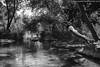 Riverfall_14 (pietroiacono) Tags: bw nude landscape italia outdoor sicilia cascata riverfall misilmeri