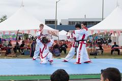 DC0_1252 (Eisbier) Tags: sport alaska training demo centennial do martial arts martialarts taekwondo celebration anchorage tae tkd kwon champ champmartialarts