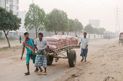 Cements on the Way (Sheikh Shahriar Ahmed) Tags: street digital construction nikon transport cement streetlife dhaka bags constructionsite bangladesh materials banasree puller dhakadivision aftabnagar sheikhshahriarahmed thelagaari