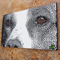 Ouzo (.krayon) Tags: dog color detail work artwork acrylic handmade canvas pixel pixelart detailed tecnique cleanjob krayon customcanvas