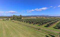 345 Talga Road, Lovedale NSW