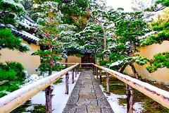 (Koji_Huang) Tags: winter snow japan kyoto     nishijin