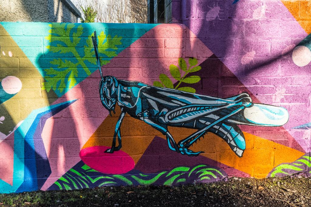 NEW STREET ART AND NEW TEAROOMS [HERBERT PARK DUBLIN]-124055