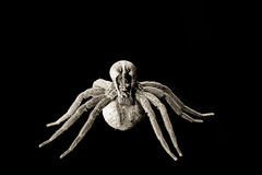 Mother Load (JaniceNZ) Tags: spider egg sepia symmetry nature animals nurseryweb