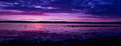 lavender sky (ally bally bee) Tags: atmospheric beach colours clouds contrast catacol evening island isleofarran kilbrannansound landscape light lowlightphotography manfrottotripod nature naturephotography northayrshire outdoors open orange panoramic purple reflections sonycameras scotland sonyphotographing sigmalens shadows sonya77 sky sunset silhouette seaweed sea shoreline tripod violet water weather wideanglelens arran lavender