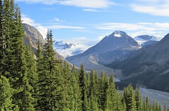 Headwaters of the Mistaya River (Patricia Henschen) Tags: banff banffnationalpark nationalpark icefieldsparkway park parks parcs parkscanada peyto lake bowsummit peytolake mistayariver glacier creek rockflour mountains mountain canadian canadianrockies rockies rocky rockymountains clouds