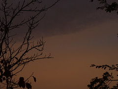 Sunrise 20161207 (caligula1995) Tags: 2016 clouds plumtree sunrise