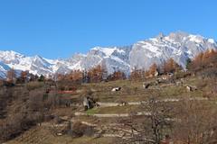 Isrables (bulbocode909) Tags: isrables valais suisse vergers montagnes automne arbres cabanes bleu paysages nature neige