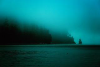 Harbour Fog 1