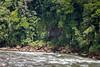 Lonely in a Kayak on Sarapiqui River (jeff_a_goldberg) Tags: sarapiquiriver winter sarapiqui haciendapozoazul naturalhabitatadventures nathab pozoazul costarica heredia cr