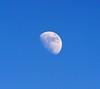 DSC_5487e ~ Moon (BDC Photography) Tags: pipecreek texas usa moon nikon nikond3 nikondslrcamera nikonafiteleconvertertc14e14x bwfpro77mm010uvhaze1xmrcfilter nikonafsnikkor300mmf4difedlens astrophotography slikpro700dxamttripod