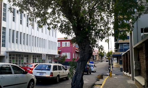 Avenida 9 al oeste, con la escuela de arquitectura del TEC y la casa Coto Cubero av.9, c.5-7/ 9th avenue with the school of Architecture of the TEC and the Coto Cubero heritage house 9th av., 5th-7th st.