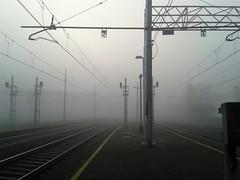 Qui nebbia (Aellevì) Tags: binari stazione fili pali inverno grigio nessuno viaggio 24 13