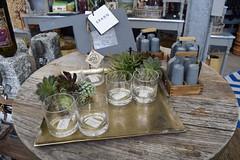Spring 2017 (SouthwoodTulsaOK) Tags: 2017 spring bar glass chalkboard succulent