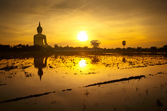 Wat Muang (Patrick Foto ;)) Tags: travel sky sculpture tree tourism nature face field statue architecture sunrise landscape asian thailand temple gold golden back big asia rice outdoor buddha background buddhist traditional religion culture buddhism icon thai meditation wat filed largest