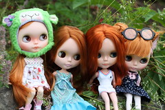 Redheads :D (Buzzingbumblebee) Tags: cute les wow n strawberries blythe pow poncho creamy sbl rbl vsmash jeunette