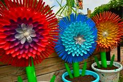 Cutlery blooms (radargeek) Tags: florida fork spoon plastic fl fortmyers edisonandfordwinterestates artsinthegardens veteransparkacademyforthearts