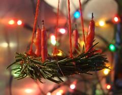 Advent Bokeh (captain_joe) Tags: macromondays holidaybokeh bokeh advent adventskranz kerze candle