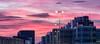 The Hague sunset (zilverbat.) Tags: denhaag sunset zilverbat dutch thehague image thenetherlands timelife town city cityscape travel citytrip cinematic visit postcard bookcover urban