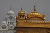 Harmandir Sahib, le Temple d'Or (thomaspollin [thanks for 1.5 million views !!!]) Tags: thomaspollin thomas pollin asie asia asien inde india indien pendjab punjab amritsar harmandir sahib harmandirsahib golden temple goldentemple templedor or sikh sikhs sikhisme sikhismus sikhism panjab