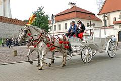 Poland-01700 - Carriage Ride (archer10 (Dennis) 90M Views) Tags: krakow poland globus sony a6300 ilce6300 18200mm 1650mm mirrorless free freepicture archer10 dennis jarvis dennisgjarvis dennisjarvis iamcanadian novascotia canada horses carriage lady man