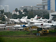 A Flock of Seaplanes (knightbefore_99) Tags: plane airport mexico mexican fly seagull flock puerto vallarta cool bird awesome south 2017 holiday palm tree