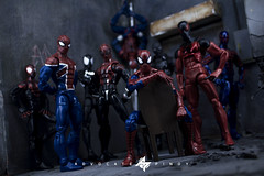 Marvel's Spider-Verse (advocatepinoy) Tags: articulatedcomicbookart advocatepinoy acba advocate928 toyreviews toycollection pinoytoykolektors collection marvellegends dioramas comicbooks bigbadtoystore actionfigures howto unboxing toyphotography tutorial diy spiderman posing diorama spiderverse art photography creativeshots newtoys dominicdimagmaliw actionfigure actionfigurecollectioncategory marvel photosetup advocatepinoyphotography advocatephotography