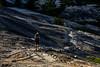 Blasted trail (speedcenter2001) Tags: wilderness anseladamswilderness california sierranevada sierra sierraphile highsierra mountains outdoor hiking backpacking backcountry nikonseriese75150mmf35