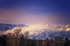 avenue blue... (J. Kaphan Studios) Tags: morning mountains jacksonhole wyoming landscape landscapephotography bluehour bluesky blue clouds trees ambientlight