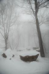 sunday-3105 (FarFlungTravels) Tags: winter ski skiing laurelhighlands pennsylvania reservoir morning sunrise foggy snow squall