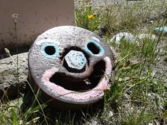 20170111_133615 (arbatasta) Tags: elmaitén smile ferrocarrilesargentinos pepa lsd trinitrotolueno latrochita chubut leleque steamengine steamtrain patagonia