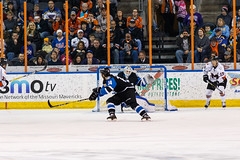 "Missouri Mavericks vs. Wichita Thunder, January 7, 2017, Silverstein Eye Centers Arena, Independence, Missouri.  Photo: John Howe / Howe Creative Photography • <a style=""font-size:0.8em;"" href=""http://www.flickr.com/photos/134016632@N02/32210095116/"" target=""_blank"">View on Flickr</a>"