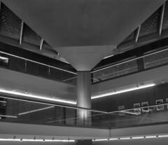 Design Museum interior (Tim Ravenscroft) Tags: architecture designmuseum london interior structure roof balcony monochrome blackandwhite