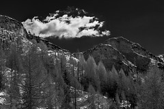Bocchetta Portule (Carlo Milanese) Tags: asiago montagna mountains landscape paesaggio biancoenero blackandwhite contrasto contrast alberi trees nuvola cloud neve snow