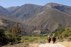 "2015_404074 - Alpujarras Riders (2) • <a style=""font-size:0.8em;"" href=""http://www.flickr.com/photos/84668659@N00/17905390043/"" target=""_blank"">View on Flickr</a>"