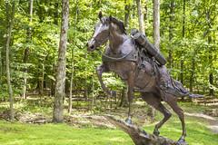 Staff Sgt. Reckless '14 (R24KBerg Photos) Tags: horse statue usmc canon virginia triangle war korea va hero marines marinecorps semperfi quantico 2014 nationalmuseumofthemarinecorps ssgtreckless staffsergeantreckless