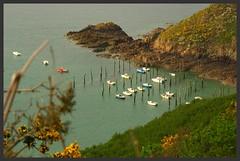 Gwin Zegal IMGP5666 (robert.fr.22) Tags: mer bretagne gwinzegal paysagesmarins