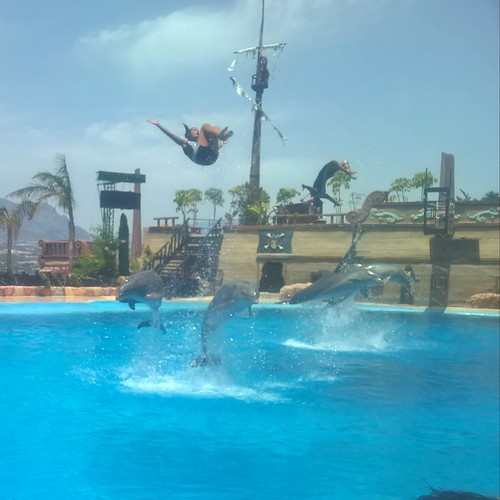 Making a splash, at Mundomar, Benidorm