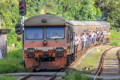 "Sri Lanka Railway : S8 831 <a style=""margin-left:10px; font-size:0.8em;"" href=""http://www.flickr.com/photos/40608624@N00/18768311672/"" target=""_blank"">@flickr</a>"