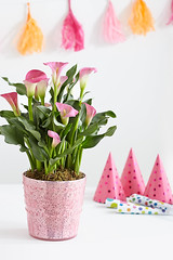 flowers+calla+lilies+in+pink+pot+with+birthday+party+hats+and+banner