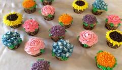 Flower cupcakes by Whitney, Linn County, IA, www.birthdaycakes4free.com