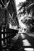 B/W Street (葛臨人(Kasarinchu)) Tags: japan 神奈川県 鉄橋 根府川
